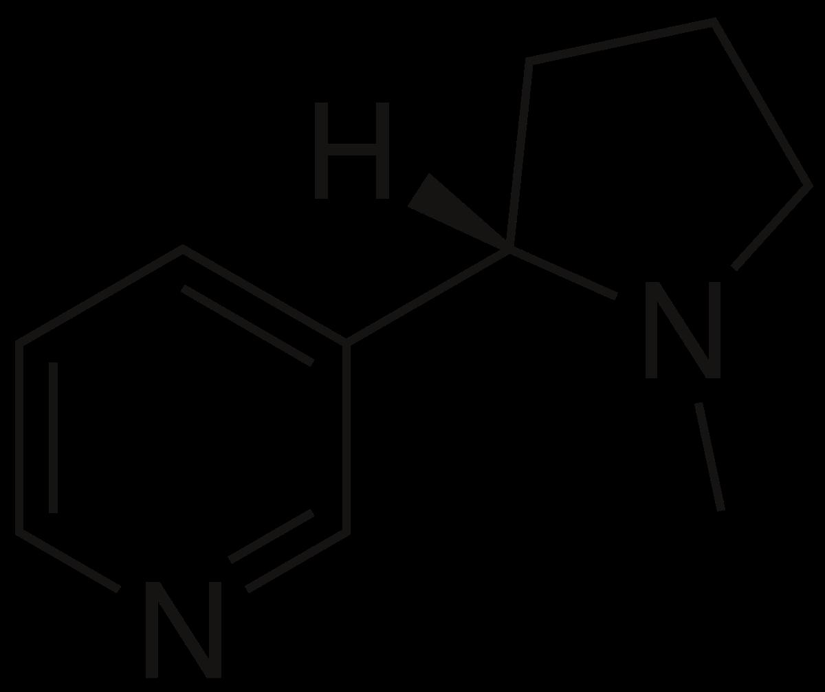 Nicotina 100mg 30ml